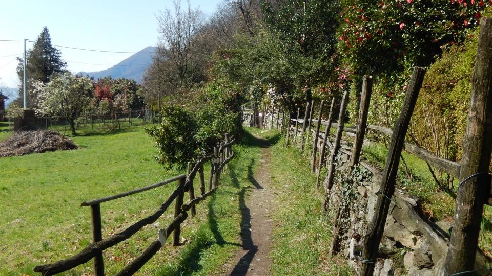 Cannero Riviera - Localita' Cheggio