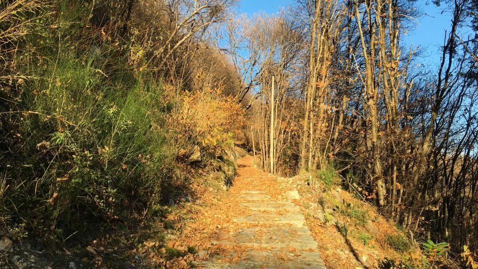 Cannero Riviera - Frazione Oggiogno sentiero per Cannero